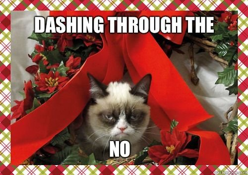 Grumpy Cat offers his opinion of women's clothing this season.Photo from funnyjunk.com