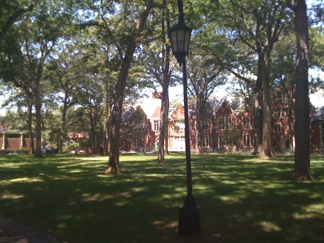 The academic quad.