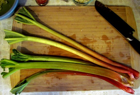 Is it me, or do the tops of the rhubarb look like duck feet?