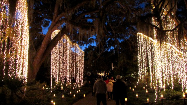 Brookgreen Gardens, Nights of 1000 Candles, December 2013.