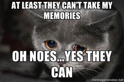 winston cat 2