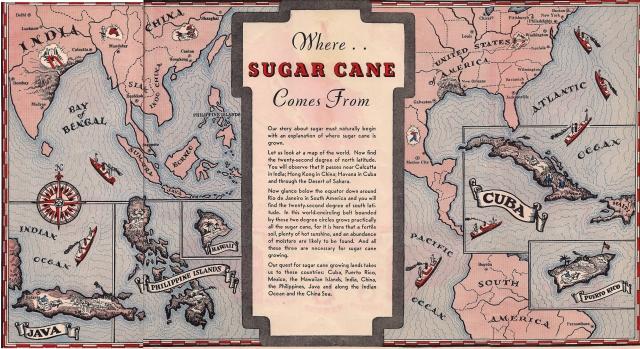 Sugar Cane trifold
