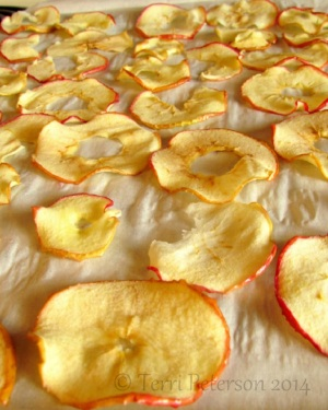 An Army of Apple Chips